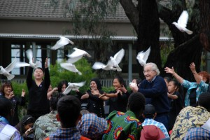Noam Chomsky Releasing the Doves